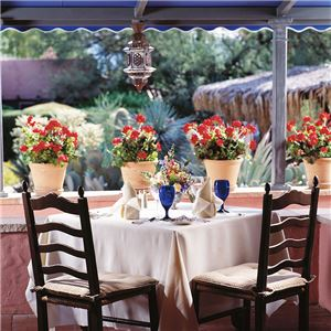 arizona-inn-tucson-dining-gallery1